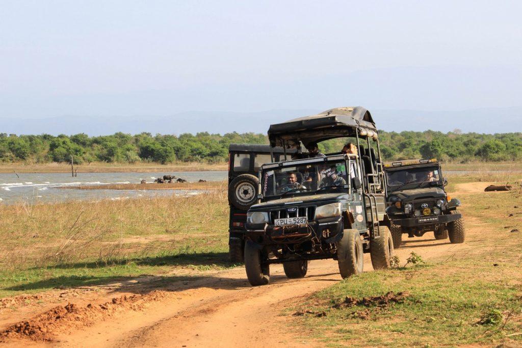 Op safari door Udawalawe National Park