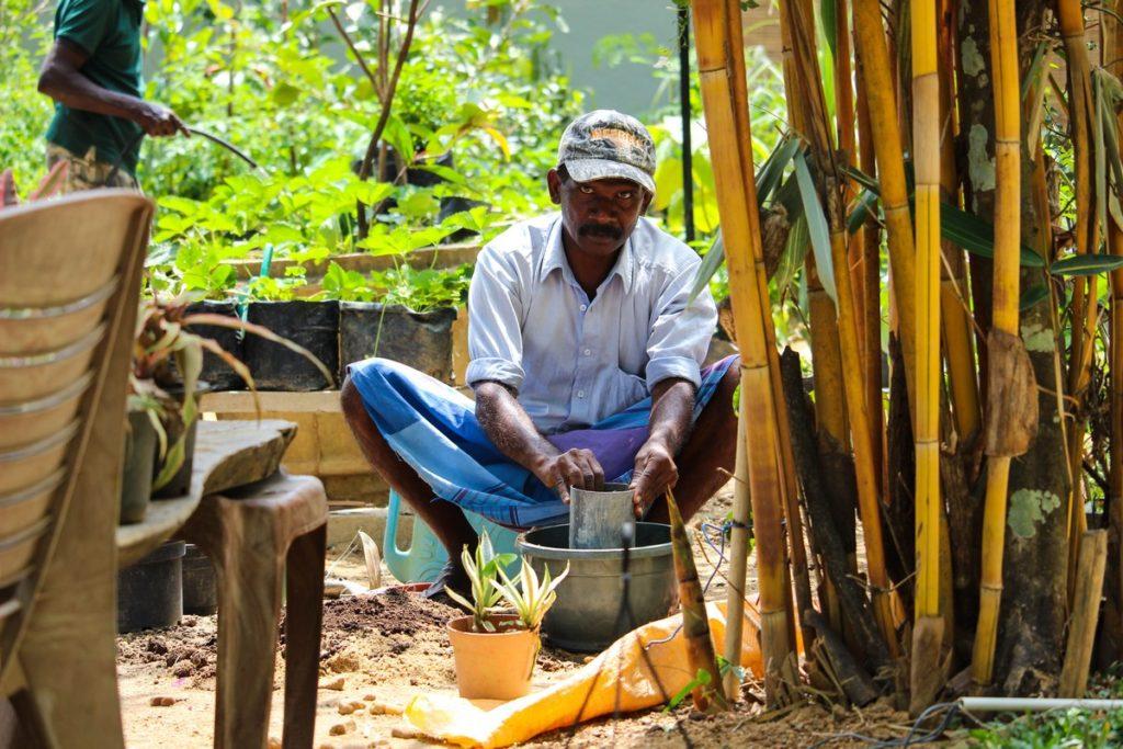 Sri Lankaanse meneer in Ella